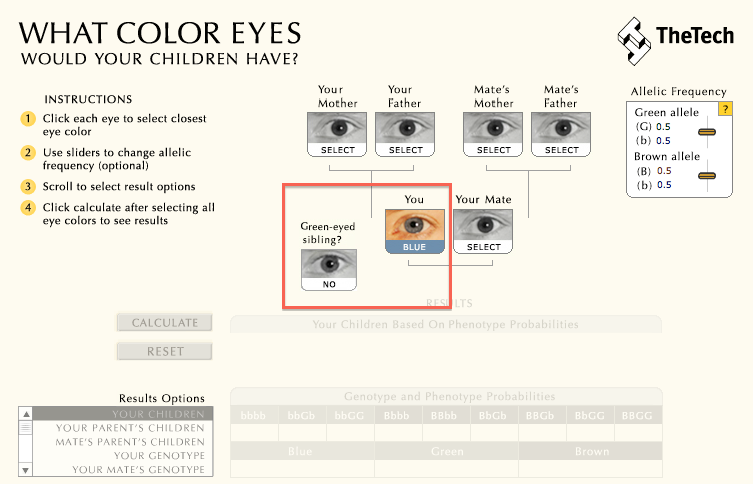 Baby Eye Color Calculator Eye Color Predictor