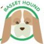 dog-basset-hound