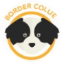 dog-border-collie