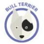 dog-bull-terrier