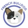 dog-bulldog-frances