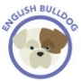 dog-bulldog-ingles