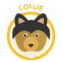 dog-collie