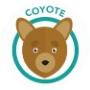 dog-coyote