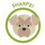 dog-sharpei