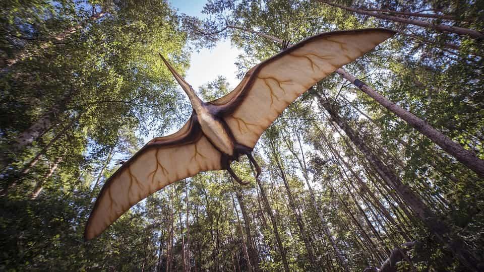 ¿Cuántos años vivieron los dinosaurios? | Cuándo vivieron ... - photo#4