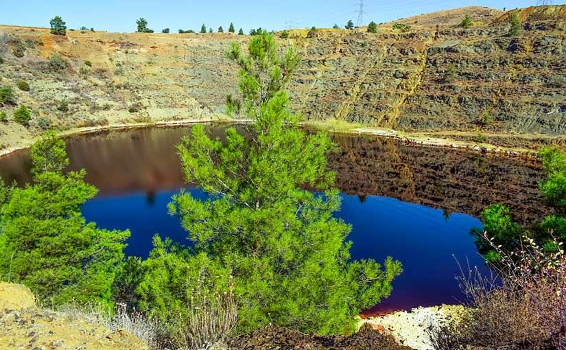 Cu ntos ecosistemas hay en el mundo clases de ecosistemas for Cuantos tipos de arboles hay en el mundo