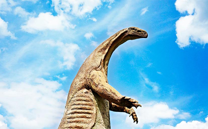 u00bfcu u00e1nto miden los dinosaurios
