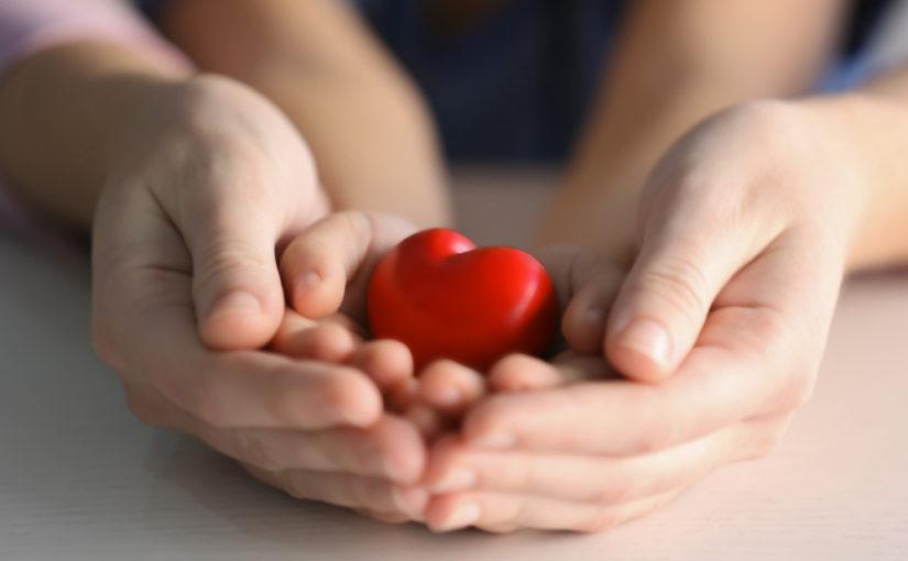 Cuánto mide el corazón humano