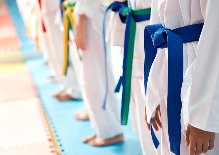 Cuántos Cinturones Hay En Taekwondo Niveles De Taekwondo
