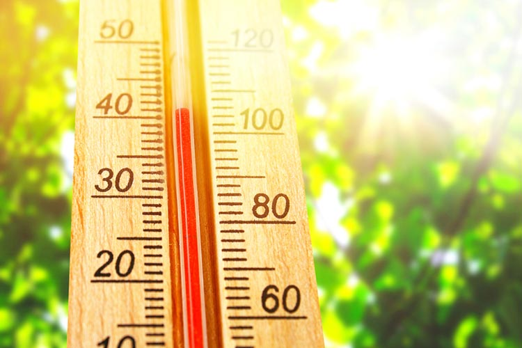 Cuánto Sube La Temperatura De La Tierra Cada Año Temperatura