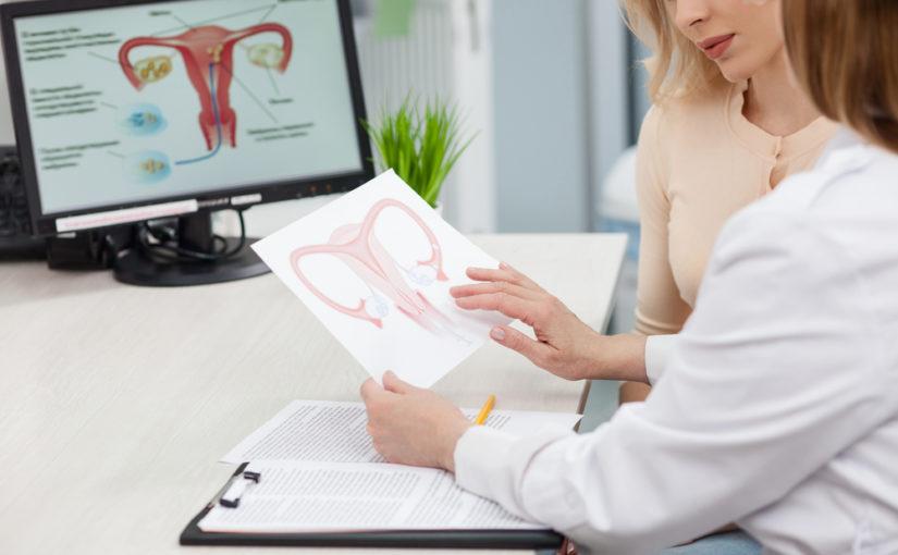 en que tiempo fecunda el espermatozoide al ovulo