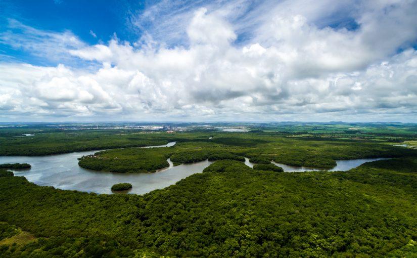 Cuántos Países Atraviesa El Río Amazonas Calculadoras